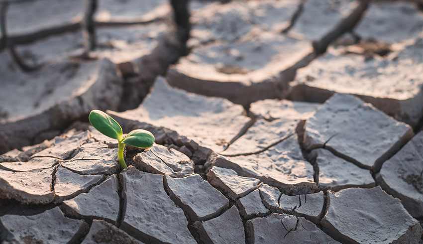 Climate Change – Taking the Temperature of the Insurance Industry and State