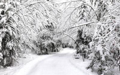 Walking in a Door County Winter Wonderland