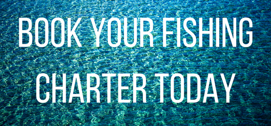 Book Your Fishing Charter Today