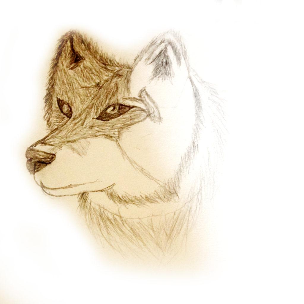 Lone Wolf by Tasia Berfelo
