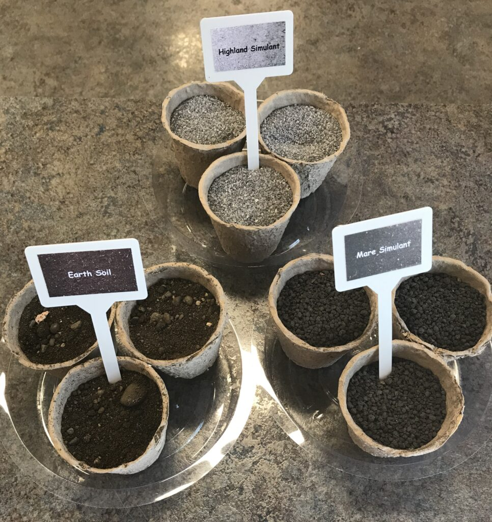 Beans on the Moon Kit Soil Grouping