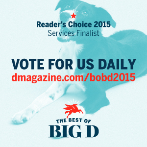 THE BEST OF BIG D 2015 NOMINATIONS