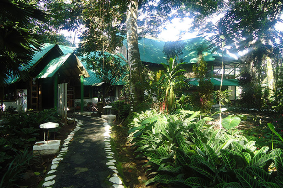 Amazon Lodging Ecuador