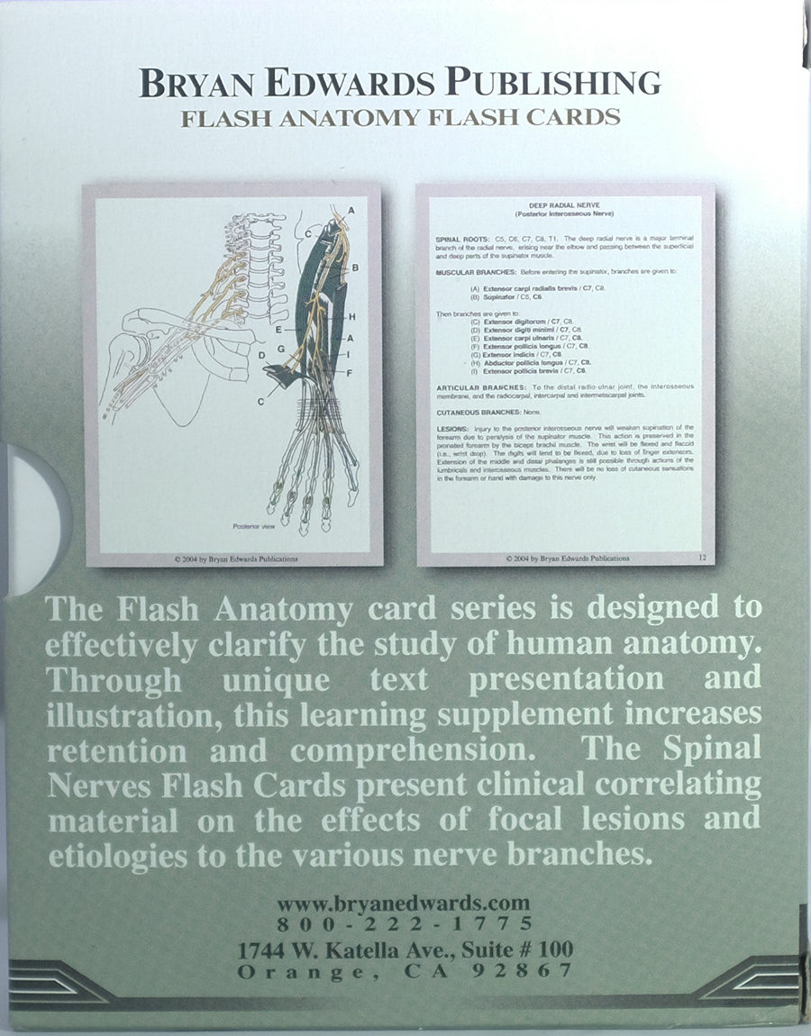 Spinal Nerves flashcards - bryanedwards.com