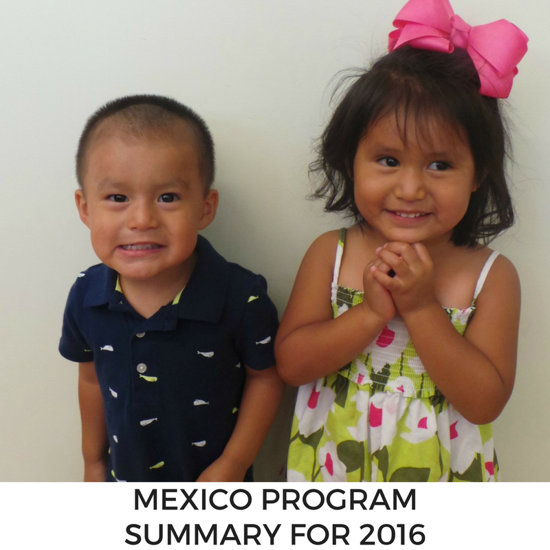 Mexico Program Summary for 2016