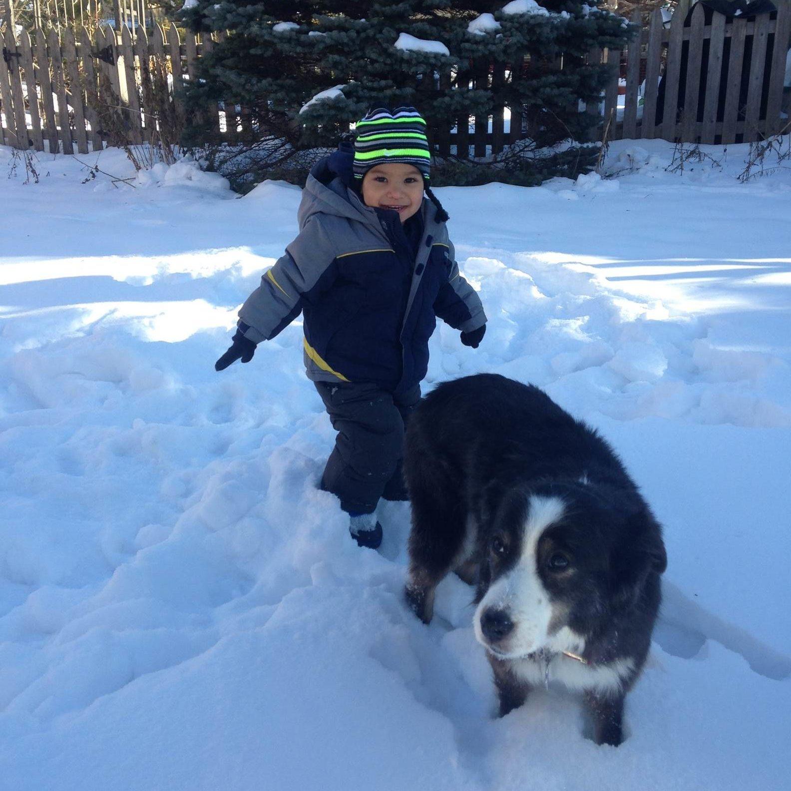 boy-dog-snow