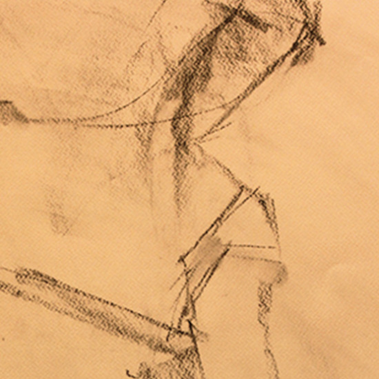 Lyrical Line Charcoal on Paper