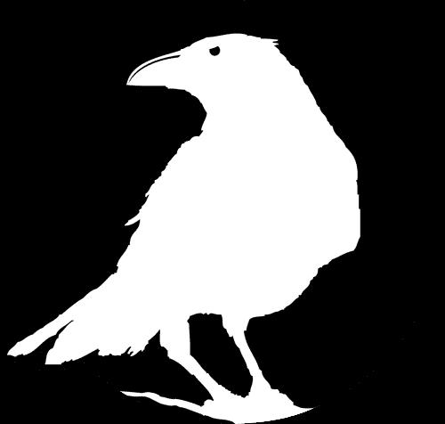 Black Raven Films