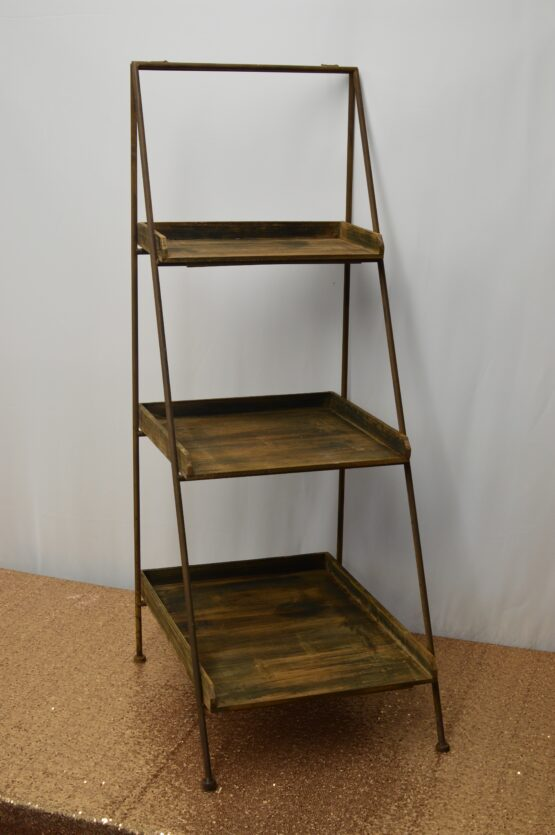 Rustic Ladder