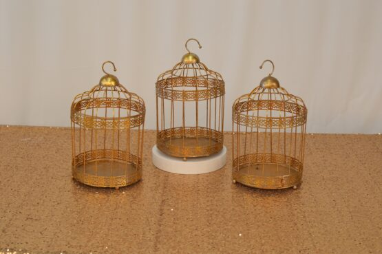 Small Gold Cages