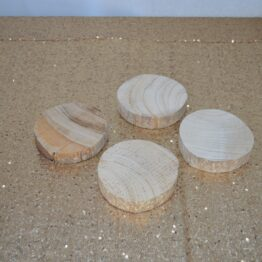 Mini Wood Slices
