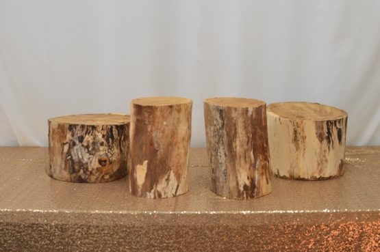 Wooden Stumps