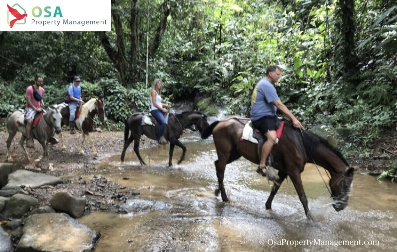 nauyaca waterfalls horseback riding