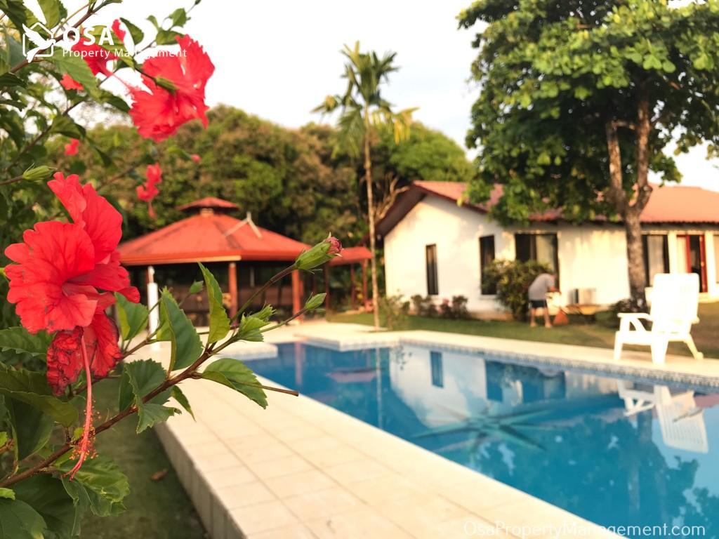 ojochal home for rent pool