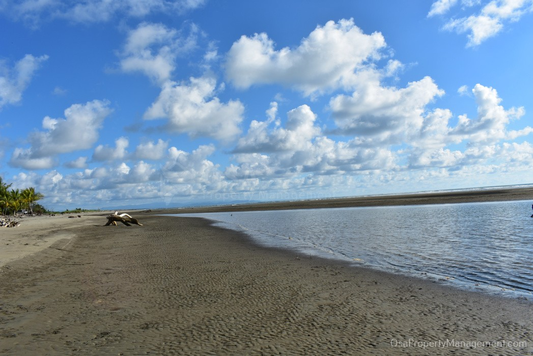 playa tortuga ojochal beach north vista