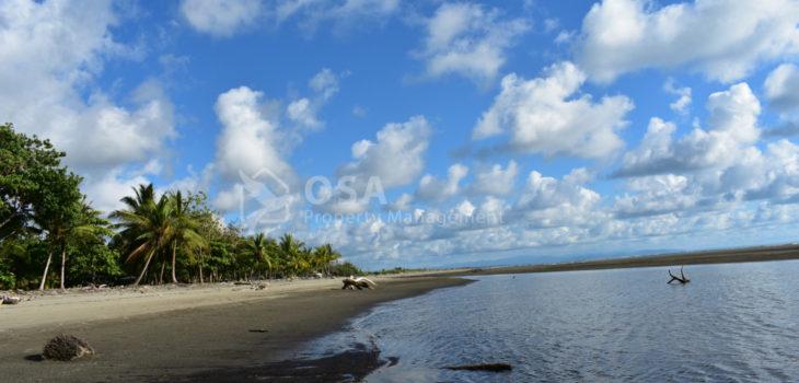 playa tortuga ojochal beach