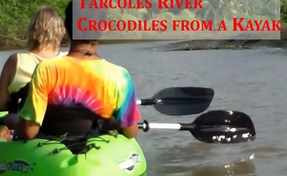 kayaking in tarcoles river
