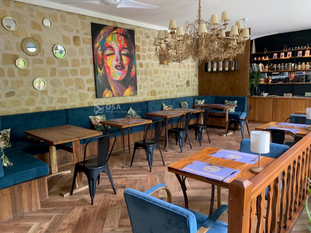 citrus restaurant ojochal interior