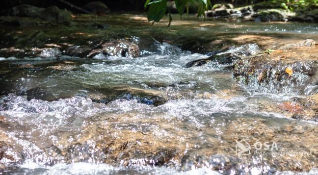ojochal stream rocks