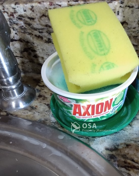 dishsoap costa rica axion