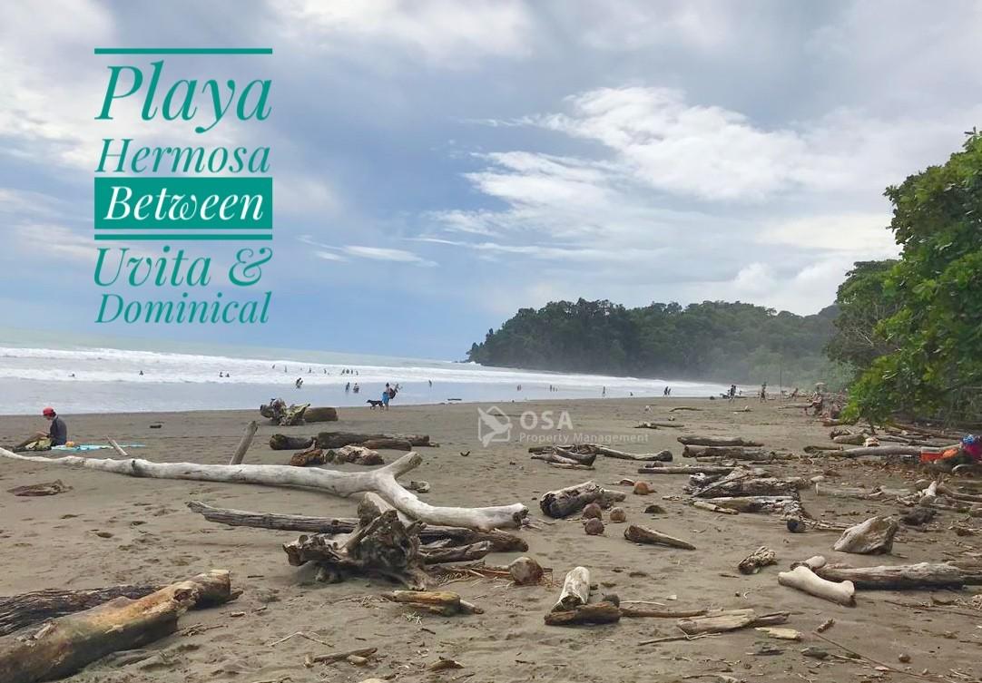 playa hermosa dominical uvita