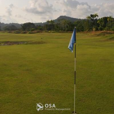 osa golf green