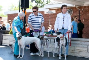 SRBA - Pet Parade - 2008 - 0805170020 G.sized