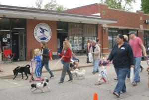 Spring Road Business Association - Pet Parade 2018 - 05