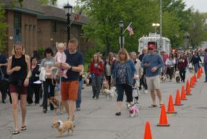 Spring Road Business Association - Pet Parade 2018 - 07