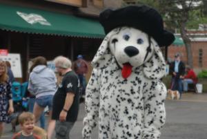 Spring Road Business Association - Pet Parade 2018 - 12
