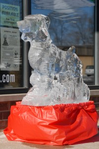 2007 Ice Sculpting and Sliegh Rides (12)