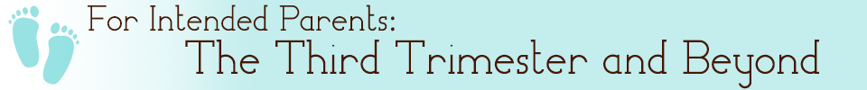 The Third Trimester And Beyond
