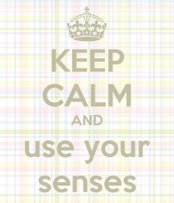 USE YOUR SENSES
