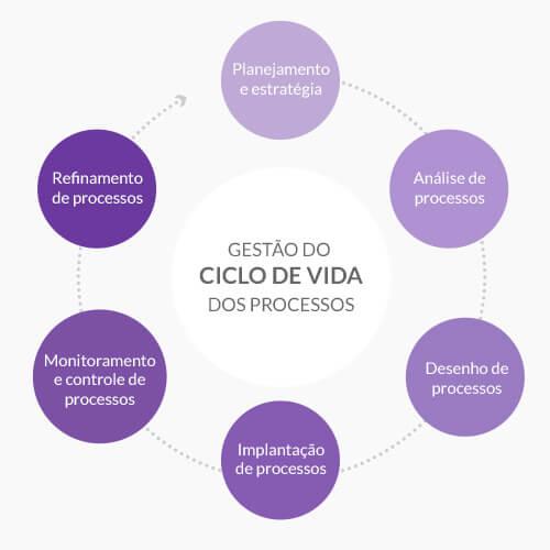 Ciclo de vida da gestão de processos