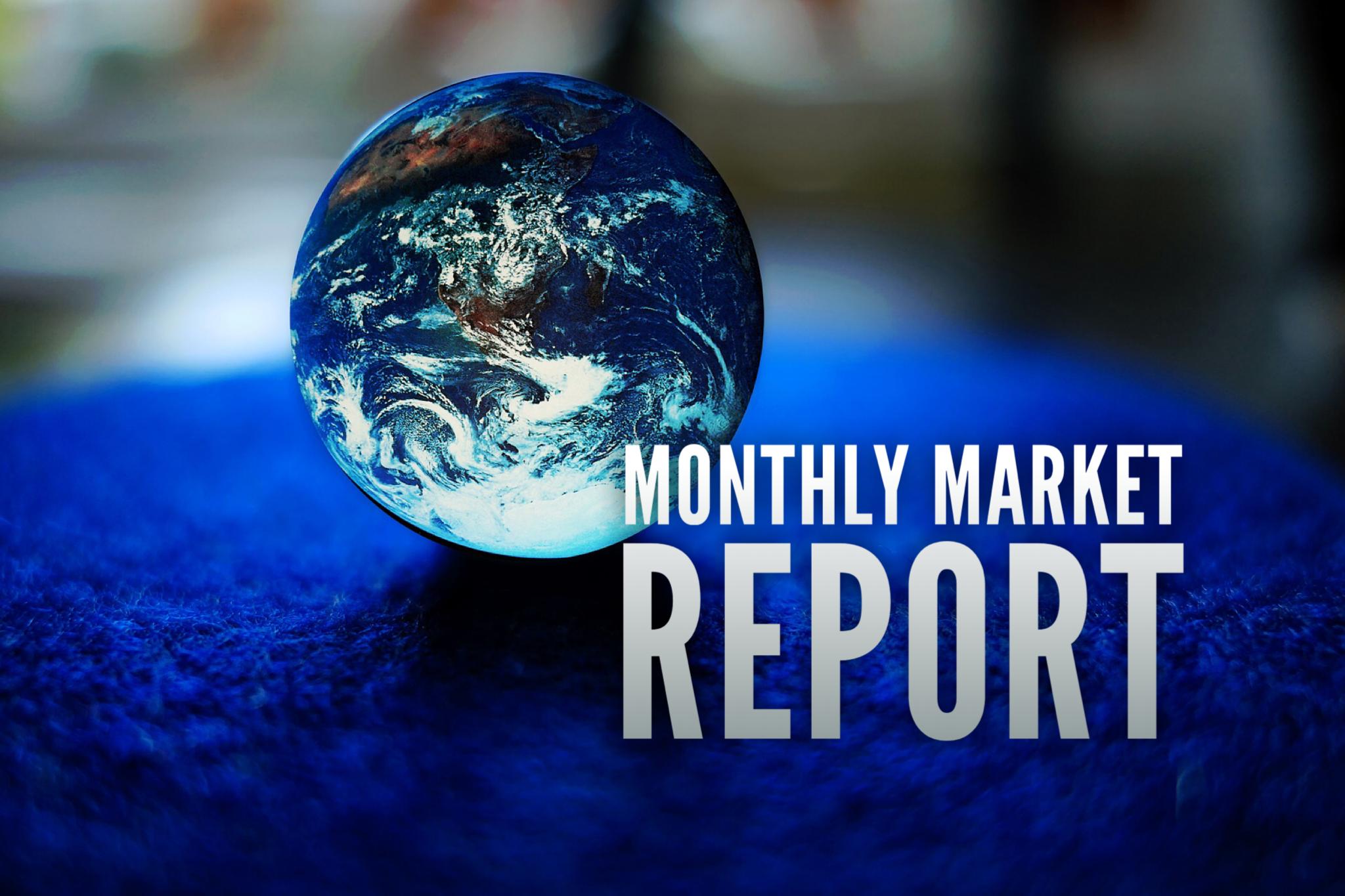 MONTHLY MARKET REPORT: DECEMBER 2020