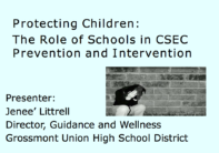 Protecting Children:  The Role of Schools in CSEC Prevention and Education
