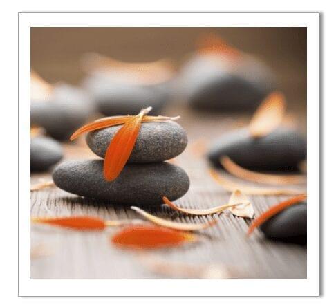hot stones orange flowers