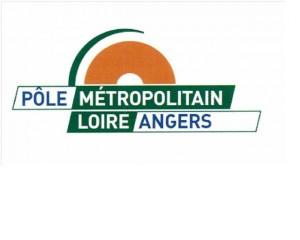 logo pole métropolitain