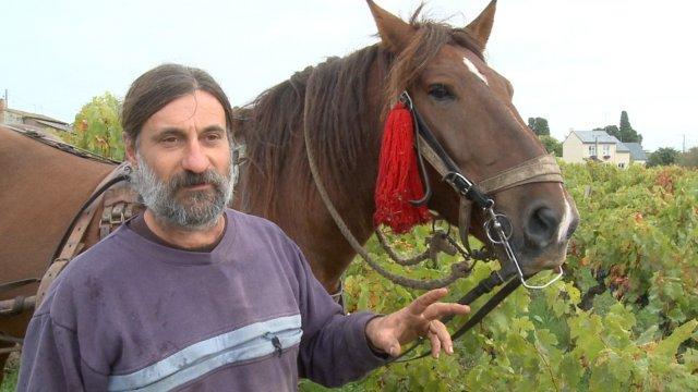 Capture Shamengo - Olivier Cousin, ici avec son cheval, partiellement relaxé par le tribunal d'Angers.