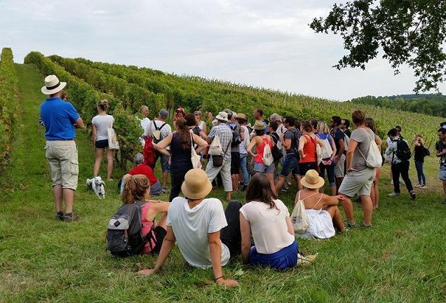 """Le 12ème édition de """"Vignes, Vins, Randos"""" les 5 et 6 septembre 2015."""