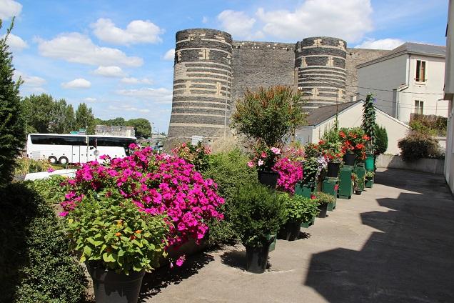 Les habitants de tous les quartiers, amateurs de fleurs et d'aménagements paysagers, sont invités à participer au concours Fleurissons Angers : inscriptions ouvertes du 15 avril au 15 juin 2016.