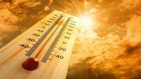 Canicule. Les températures grimpent dans le Maine-et-Loire approchant des records ce mardi 19 juillet 2016.