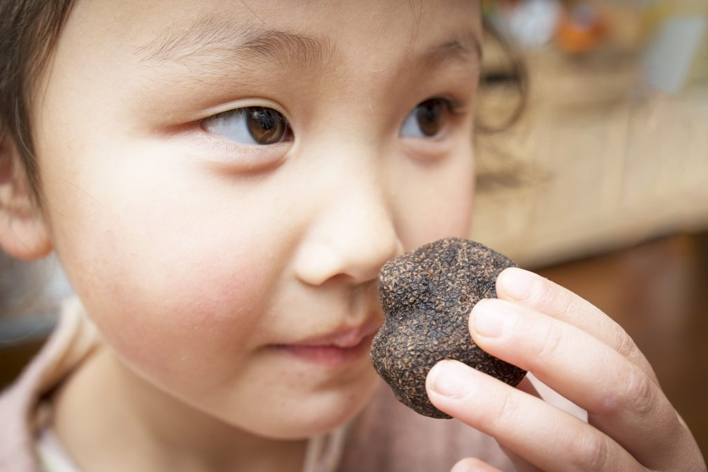 truffle-fragrance