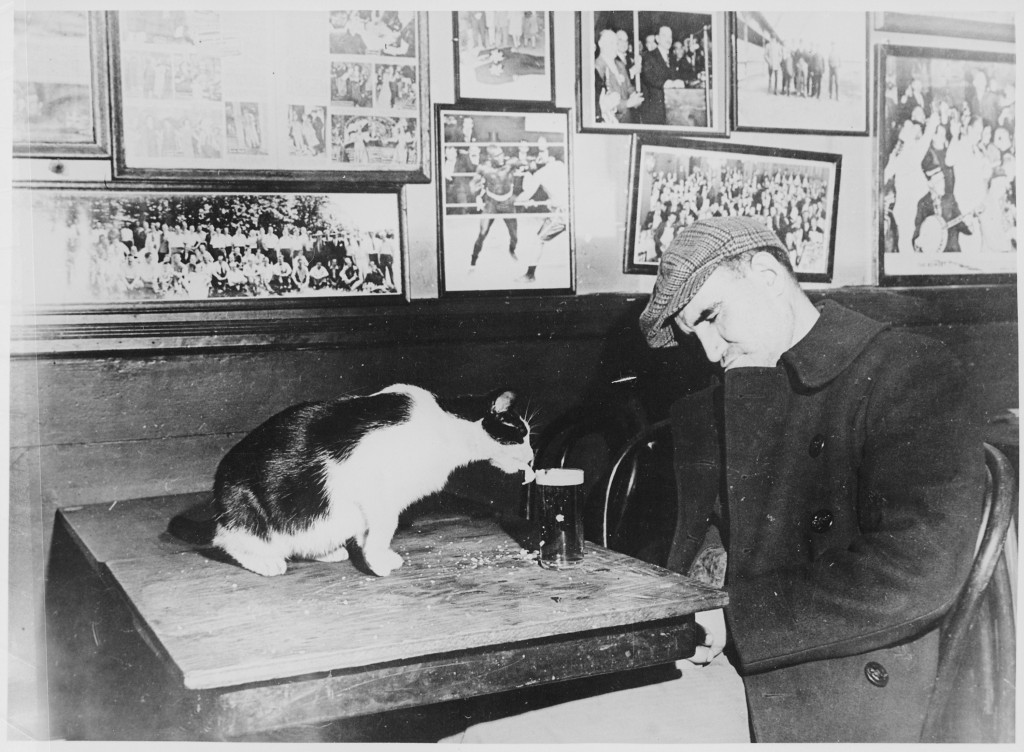A_patron_of_-Sammy's_Bowery_Follies,-_a_downtown_bar,_sleeping_at_his_table_while_the_resident_cat_laps_at_his_beer,_12-_-_NARA_-_541905