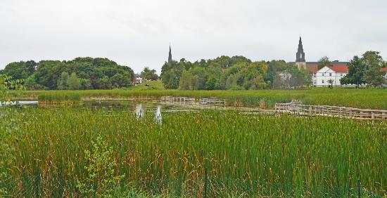 ducks unlimited park sackville