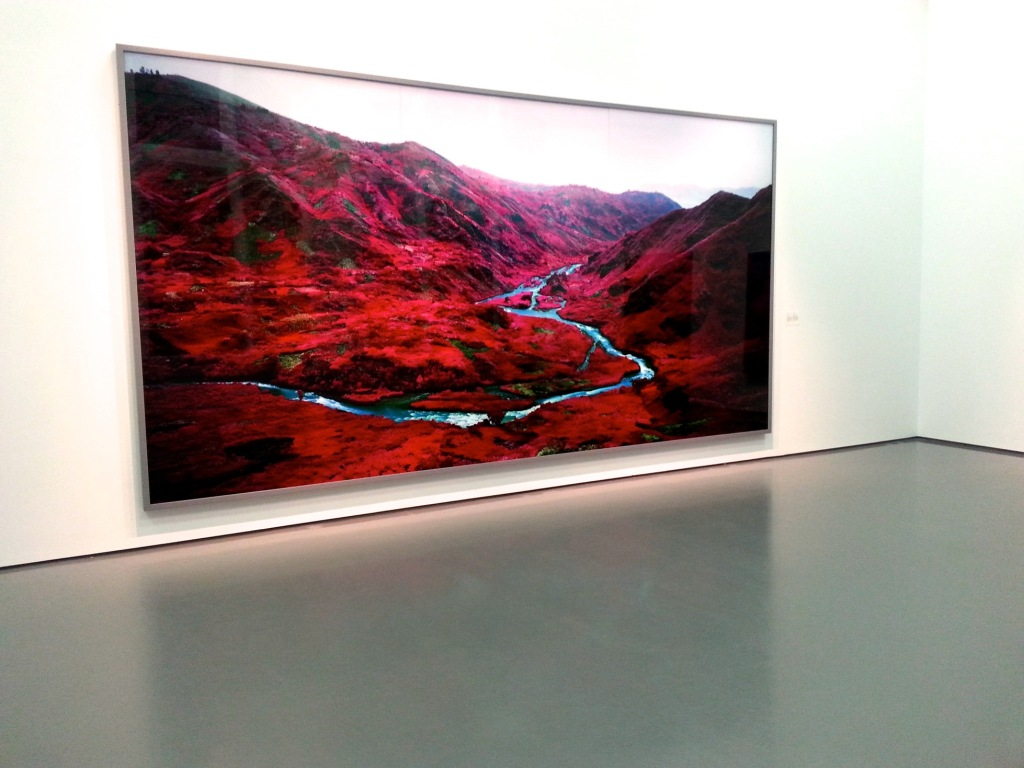 The Enclave. Richard Mosse. Photo by Annie Shreeve
