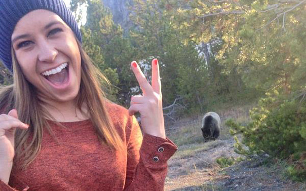 Grizzly Bear Selfie.  Photo: Twitter: coconut chanel