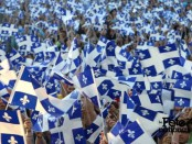Quebec flags (and one Patriotes flag) fly proudly on the day of Fête nationale. Photo: La Fête Nationale du Québec
