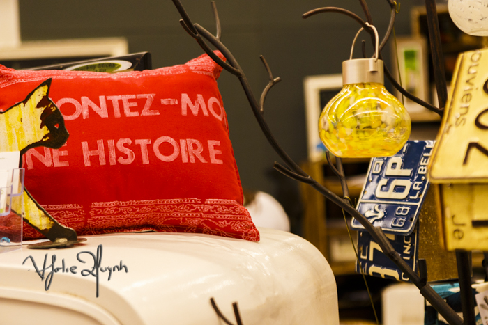Racontez-moiunehistoire. Pillow. Expo Sante et Manger. Photo Lily Huynh.