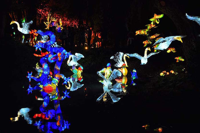 Jardins de lumière 2016 / Gardens of light 2016. Photo Sebastian Mora.